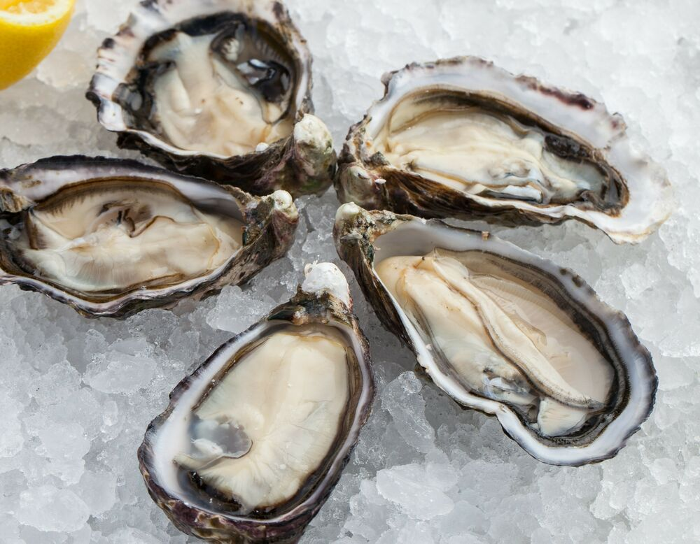 Oysters (pcs)