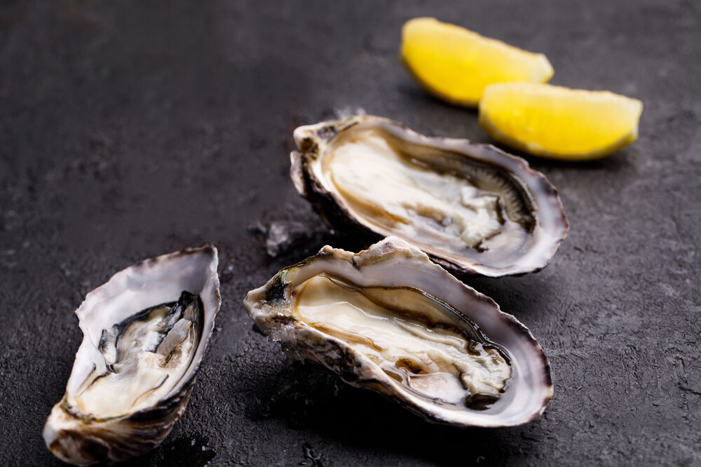 Oysters (1 pcs)